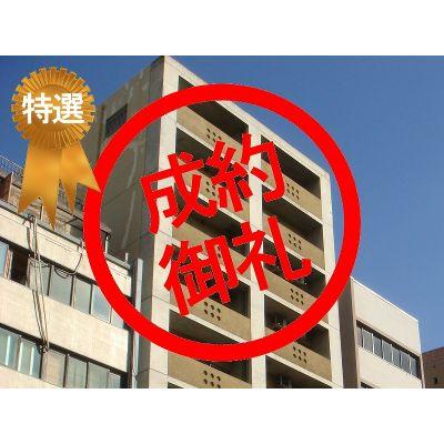 11月3日掲載 パルステージ難波南 1,250万円 8.54% (12�G)