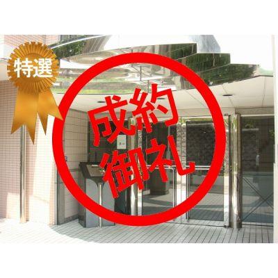 6月14日掲載 特選物件 ラ・パルフェ・ド・パラツィーナ 420万円 13.14% (4�C)